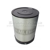 BAILEIGH DC-Canister Filter